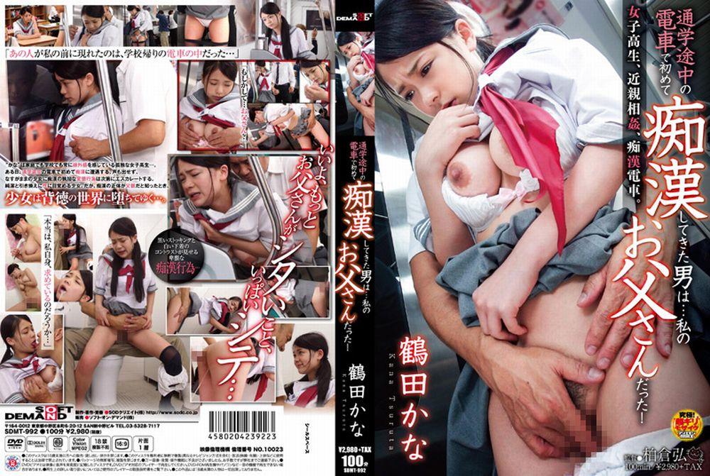 鶴田かな痴漢